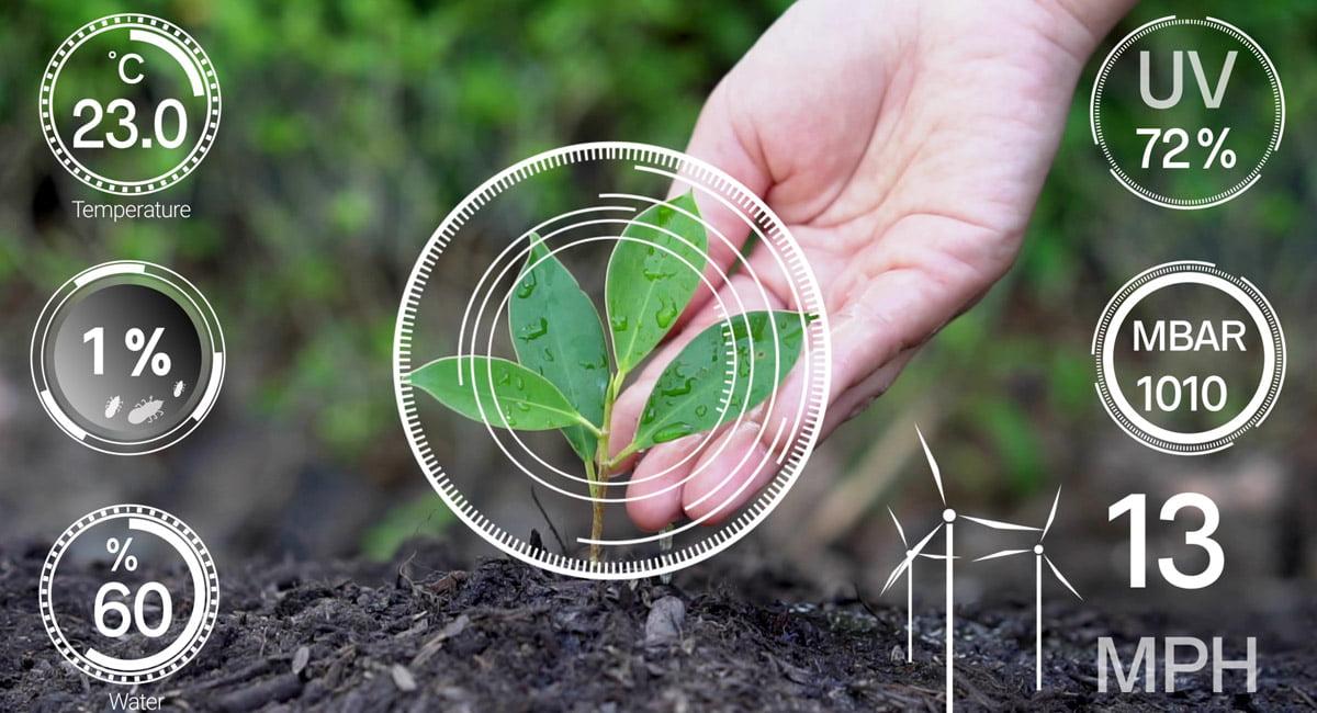 หลักการวัดความชื้นในดิน