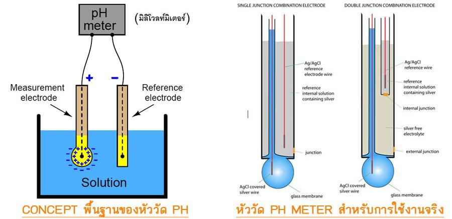 มาตรฐานสำหรับการวัดค่า pH