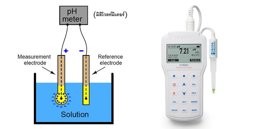 ส่วนประกอบของ ph meter