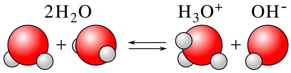 ไฮโดรเจนไอออน (H +) และไฮดรอกไซด์ไอออน (OH−)