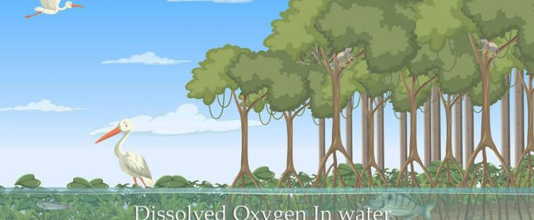 ออกซิเจนในน้ำ