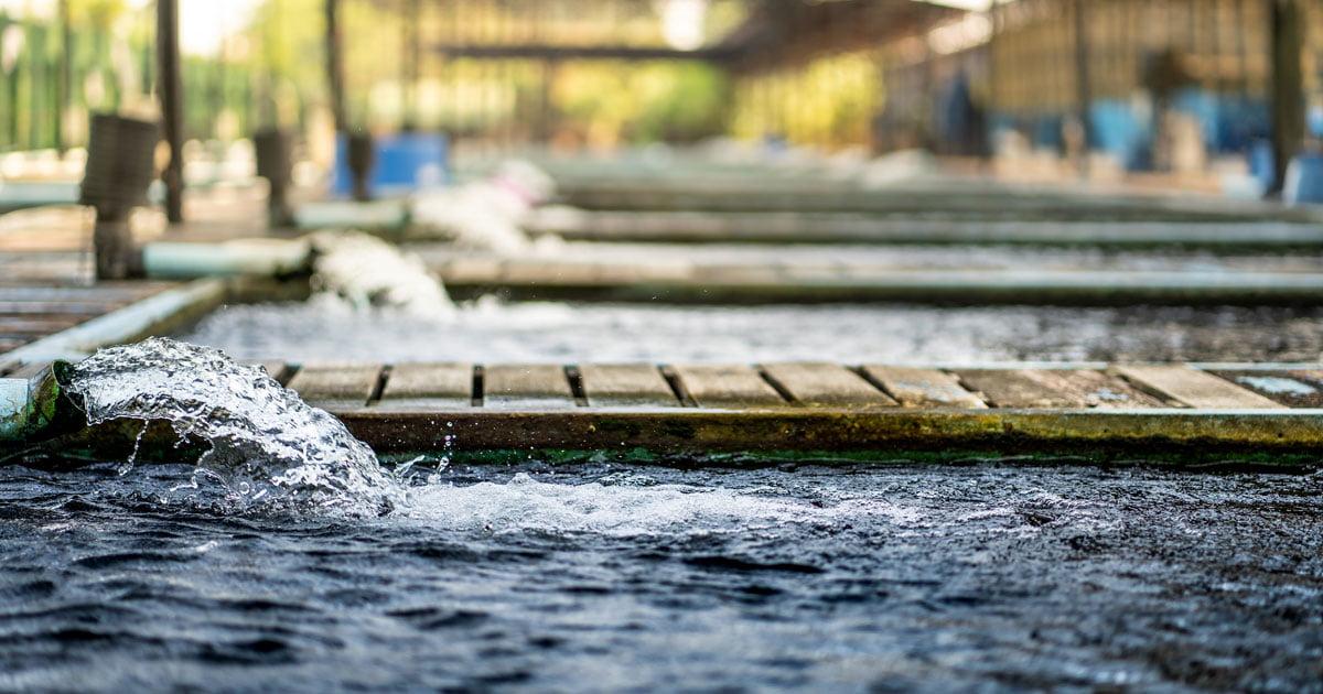 ค่า Conductivity ของน้ำ