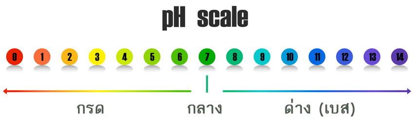ค่า pH และคลอรีน